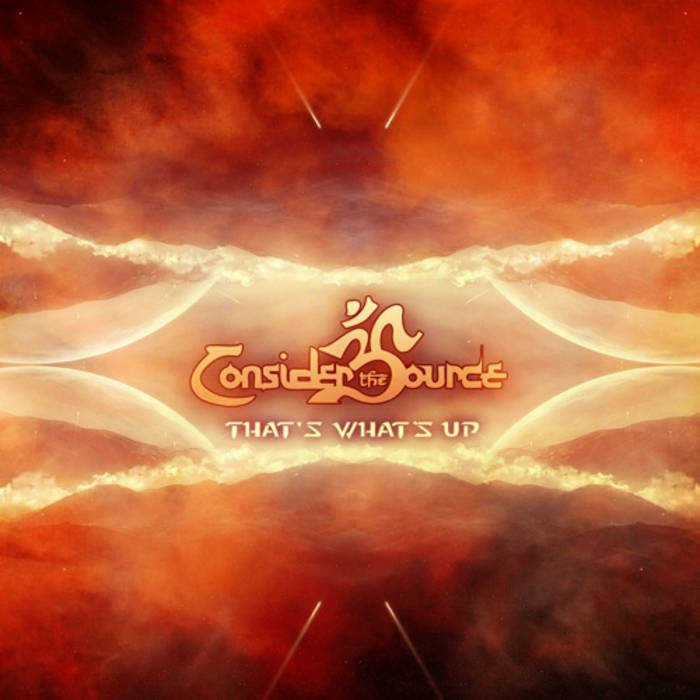 Consider The Source Vinyl